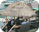 The Conch House is a restaurant in St. Augustine, FL. They serve food to you in a straw thatched hut on the beach by torchlight at night.