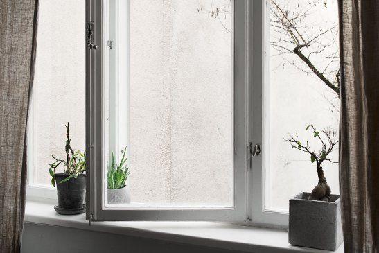 fönster krukor