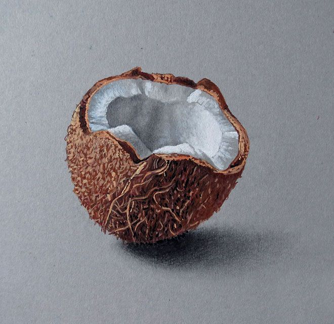 35 best Realistic drawings of objects images on Pinterest ...