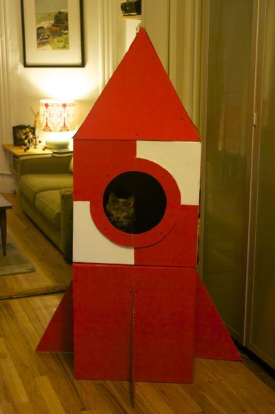 Kitty rocket