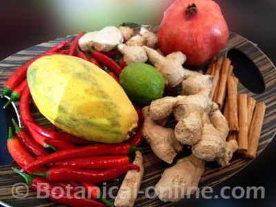 chiles, jengibre, cacao, canela, lima, especias