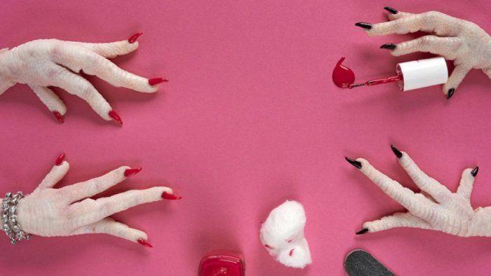 #MealsInterrupted: una galleria bizzarra di fotografie sul cibo