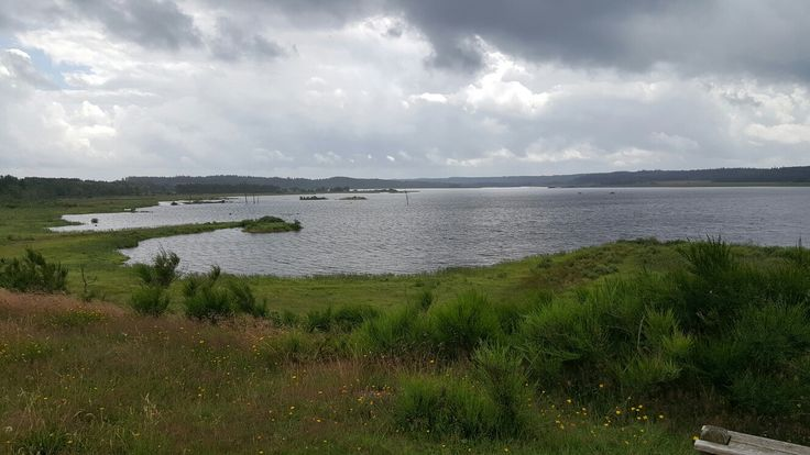 Bølling Sø set fra den østlige side
