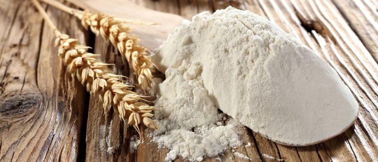 Mappa delle migliori farine d'Italia