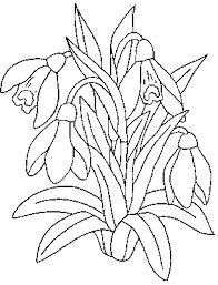Image result for sabloane de colorat pentru adulti