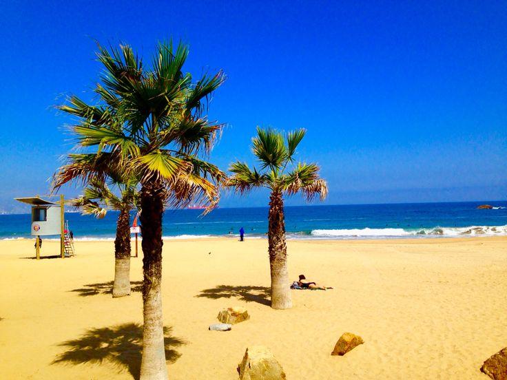 Reñaca beach