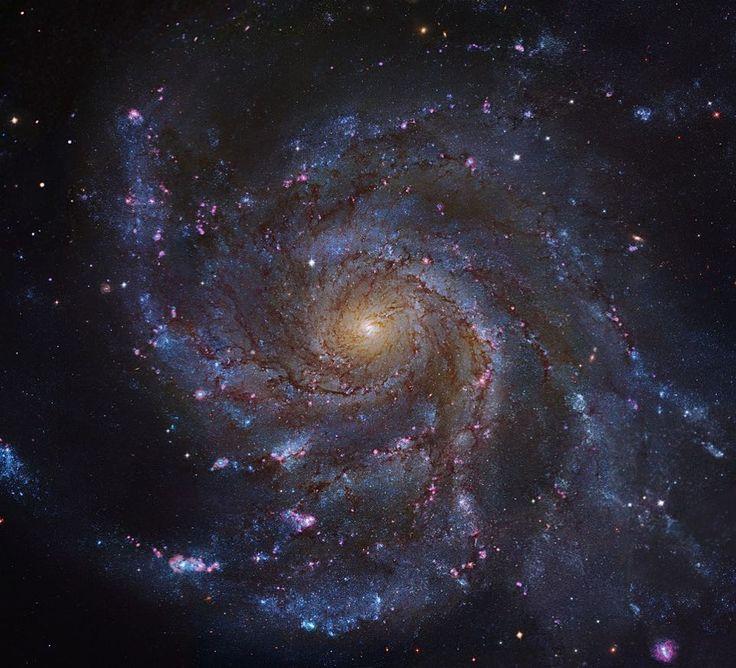 63 отметок «Нравится», 1 комментариев — The Dr Professor (@cosmic_astronomer) в Instagram: «Pinwheel Galaxy- 21 million light years away!!😍 #science #einstein #planets #galaxies #nerd #NASA…»