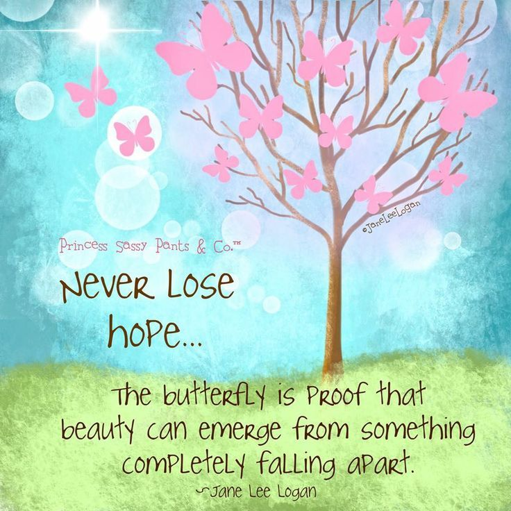 Never lose hope… The butterfly is proof that beauty can emerge from something completely falling apart.