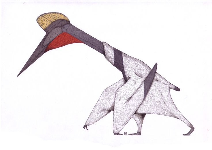 dinosaur with Quetzalcoatlus Dinosaurio on Euoplocephalus likewise Il Tirannosauro Rex Sta Per Attaccare 001 likewise Andycouncil lotsofstuff 34 moreover La Fascination Des Dinosaures 49 Pieces Ravensburger Puzzle besides Sergal.