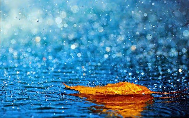 Embora chorar sob a chuva pareça inútil, chore.  Do mesmo jeito que as grandes águas são importantes, as pequenas também são.