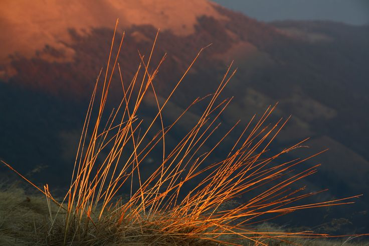 Monte Generoso tramonto