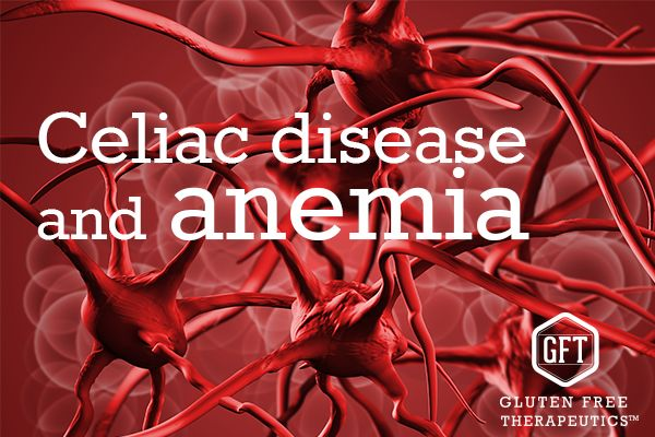 32% of Celiac Patients also have Iron Deficiency Anemia. Learn more about the connection between anemia and celiac disease.
