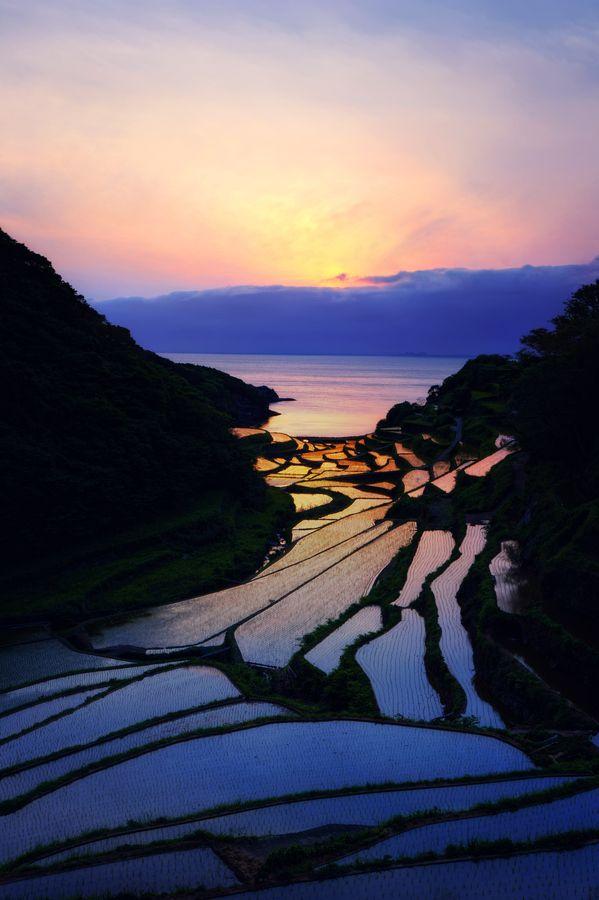 Sunset Genkai Village rice terrace in Saga, Japan