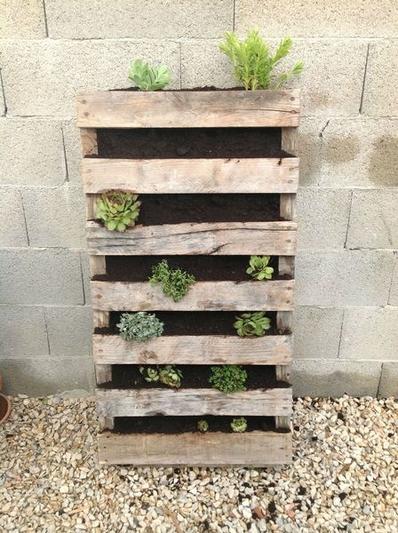 17 Best images about jardin on Pinterest  Sandbox, Plant nursery and ...