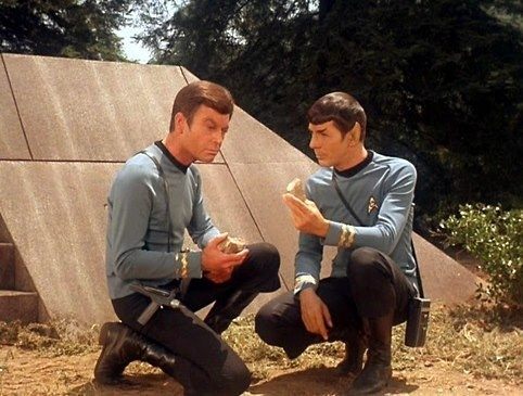 Spock trying to impress upon the doctor the urgency with which they must attend to their task of diverting the asteroid before resuming their search for Captain Kirk. From The Paradise Syndrome (Star Trek)