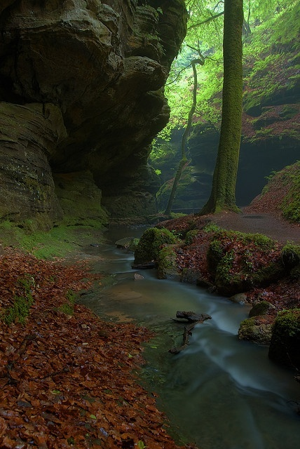 Mullerthal Gorge, Petite Suisse, Luxembourg, France