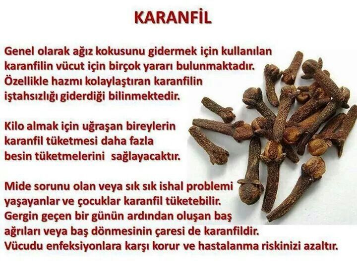 #karanfil faydalari yazimizda: http://www.sifalibitkitedavisi.com/karanfil-faydalari-nelerdir.html
