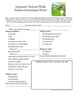 Summer Nature Walk Worksheet