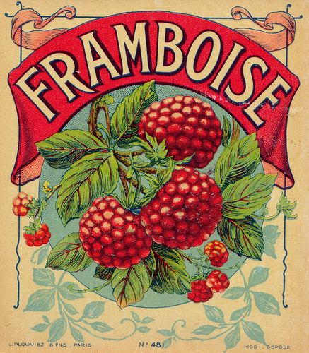A vibrantly pretty vintage label featuring my all-time favourite fruit.---La etiqueta de la vendimia vibrante bonita que ofrece mi todos los tiempos fruta favorita.