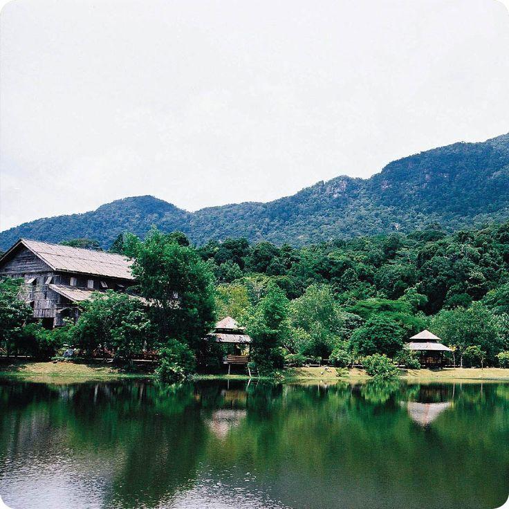 Εξερευνήστε τα παρθένα τροπικά δάση της Βόρειας Ταϊλάνδης & χαθείτε στα μαγευτικά της τοπία! http://www.expressholidays.gr/el/Exotic