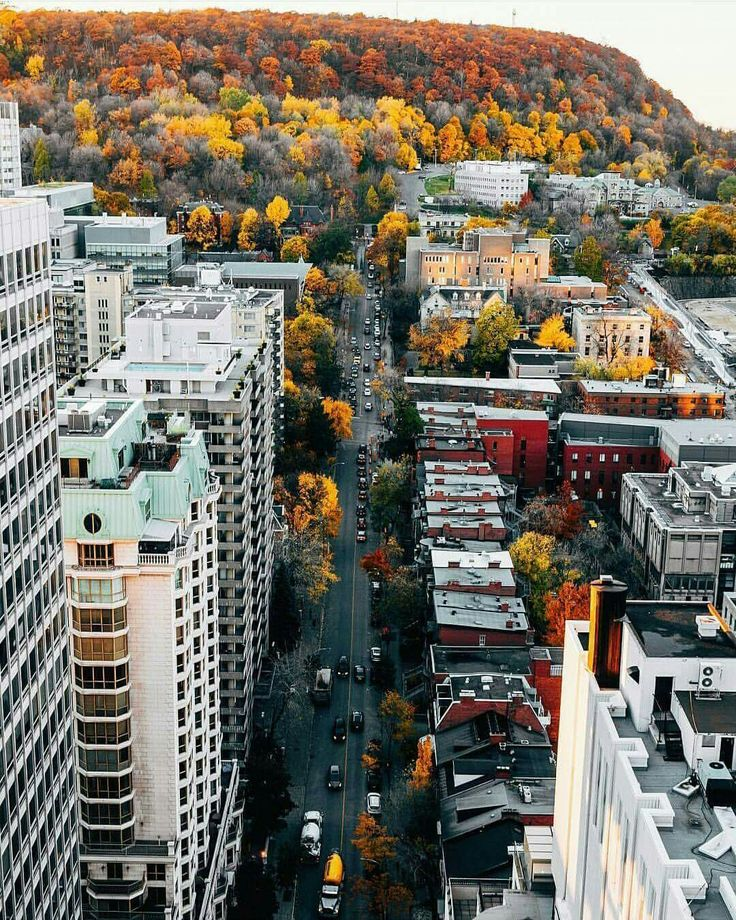 Mount Royal and Downtown Montreal during the fall by Eric Branover Photography