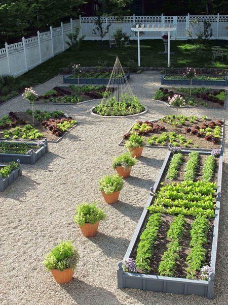garden ideas on a budget | Designing Modern Garden: Home And Garden Ideas