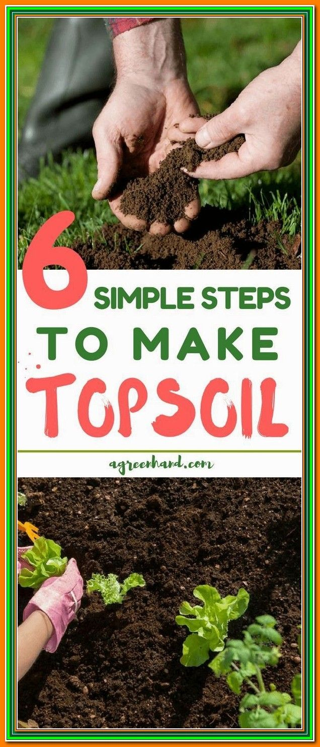 Why You Should Give Organic Garden Soil Tips A Try Vegetable Garden Soil Organic Gardening Soil Organic Gardening Tips