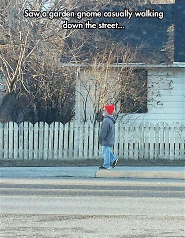 Wichita Funny Images (08:11:12 AM, Tuesday 15, November 2016 PST) – 65 pics