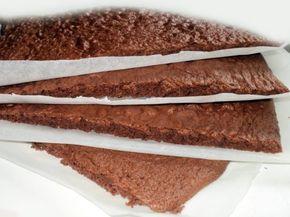 Chokolade lagkagebunde til både bradepande og springform