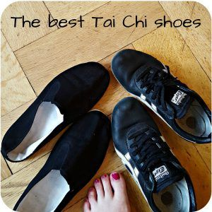 find the best Tai Chi shoes for you - pros & cons for various shoes for Taijiquan