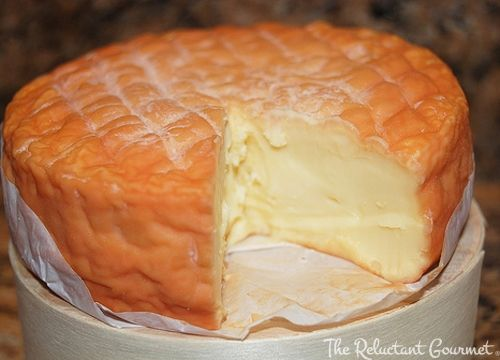 epoisses cheese | Epoisses Cheese : The Reluctant Gourmet