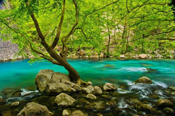 Crystal clear waters can be found not only in beaches but also in rivers such as Voidomatis,