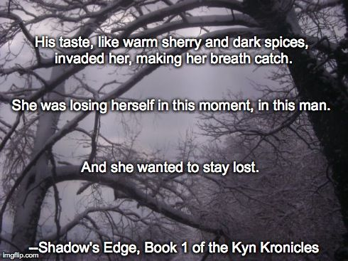 Meme for Shadow's Edge: Bk 1 of The Kyn Kronicles