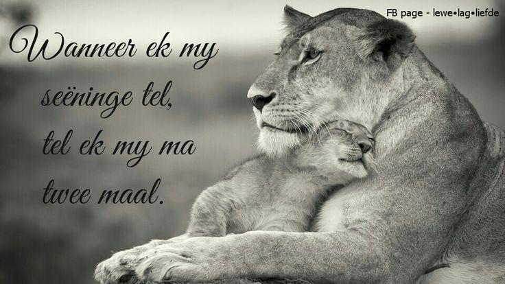 ♡ my ma