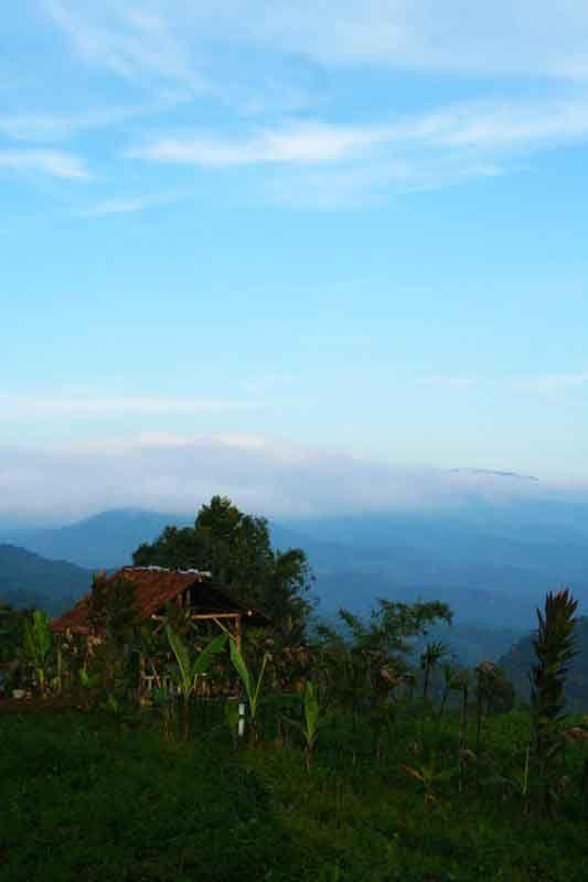 gunung bunder - Bogor