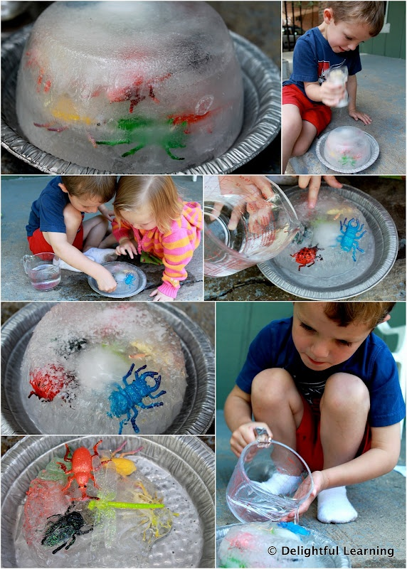 insects in ice... give each student their own frozen bug, experiment with salt, water, and pounding to get them out. (Summer unit)