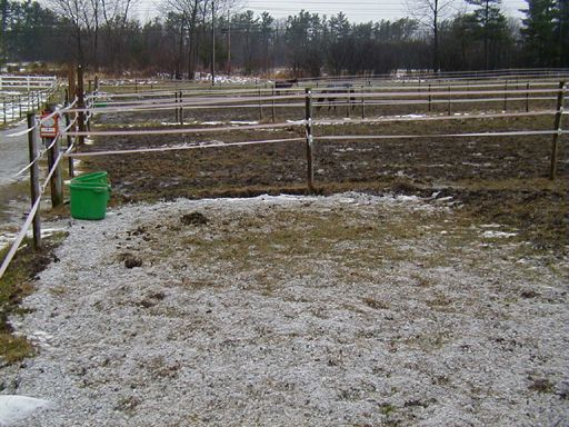 Methods to reduce mud in pastures