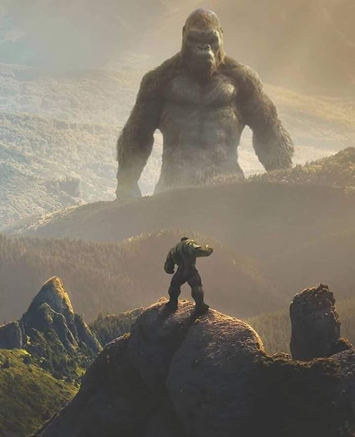 Hulk vs King Kong: I don't know who would win