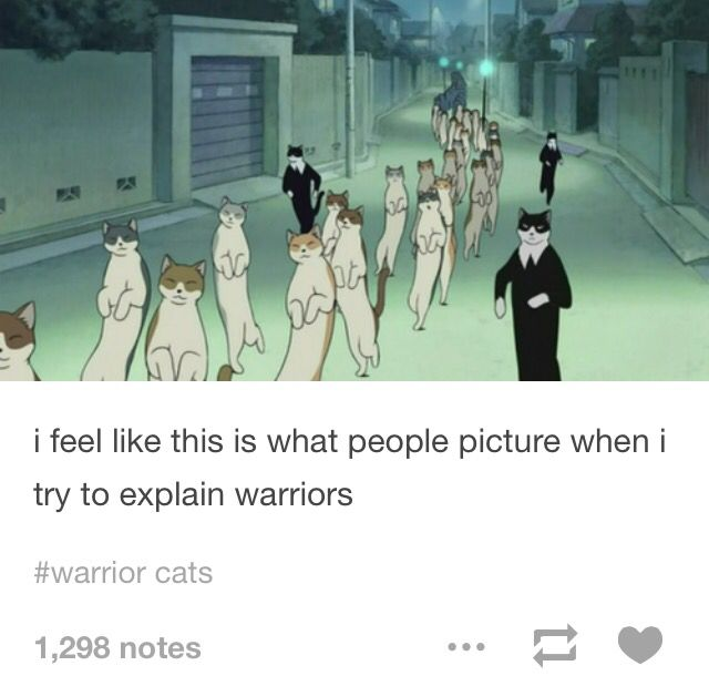 Warriors Cats Into The Wild Movie: 17 Best Images About Warriors On Pinterest