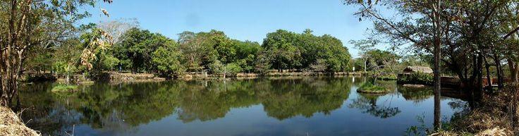 Parque Zoobotanico de Teresina . @994bda093eff451