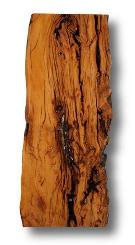 Eibe-Taxus-Massivholz-Tischplatte-Waschtischplatte-Baumkante-Treibholz-429