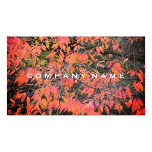Rustic Red Leaves Business Card