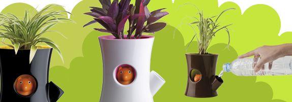#squirrel #wateringplants #gadget I lavori del mese di marzo: in casa, in giardino, nell'orto e nel frutteto! #gardening #tools #gadgets #howto #garden #giardino #strumenti #attrezzatura #orto #greengarden #comefare #tips
