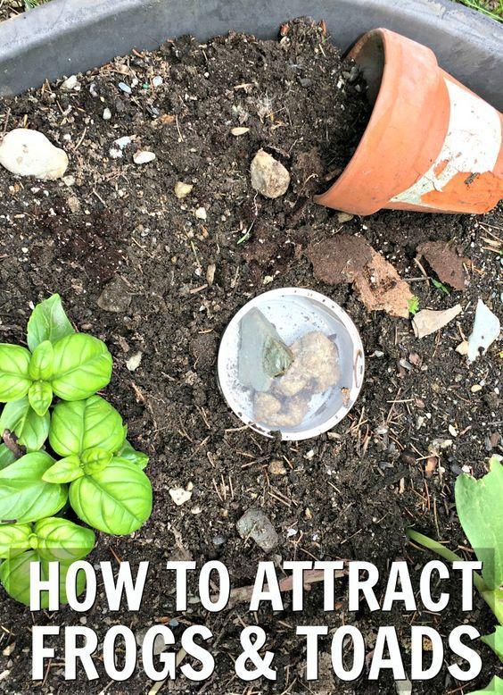 Deep Mulch Gardening , 95 Best Easy Flower Gardening Ideas Images On Pinterest,