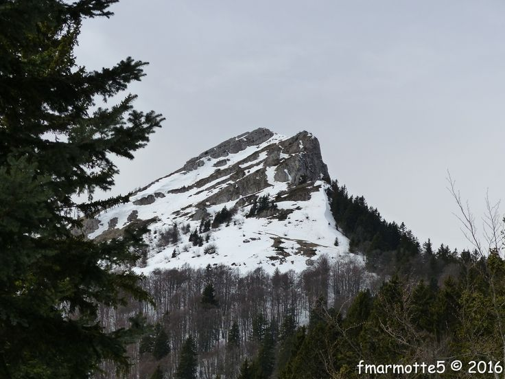 Carte 25 000 massif de Chartreuse Sud 3334 OT 4 heures pour le sommet et retour en boucle par Montfromage et la Balme de l'Air. Dénivelé total, proche de 600 mètres. Départ : la Prairie du Col de Porte 1326m. Depuis longtemps j'avais envie de partager...