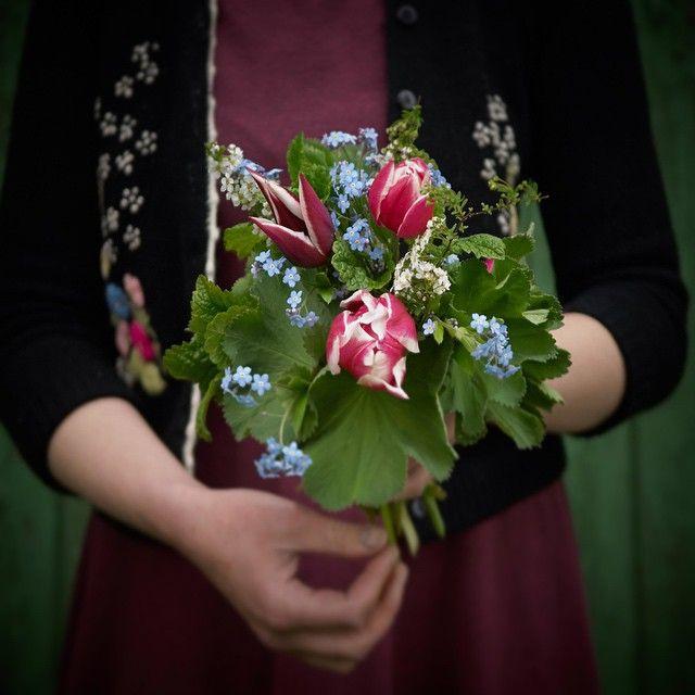 Juliane | Fröken Skicklig (@frokenskicklig) | One bouquet per day: tulip, forget-me-not, lemon balm, alchemilla, garland spirea, picked in our garden. Svenska namn: tulpan, förgätmigej, citronmeliss, daggkåpa, brudspirea. Deutsche Sortennamen: Tulpe, Vergißmeinnicht, Melisse, Frauenmantel, Brautspiere #onebouquetperday #julianesflowerdiary | Intagme - The Best Instagram Widget