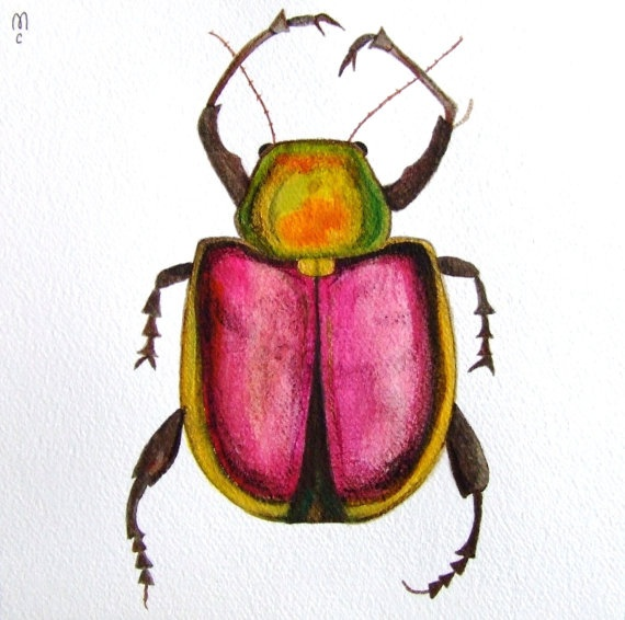Beetle Insect Original Watercolor Painting Ink por CelineArtGalerie,