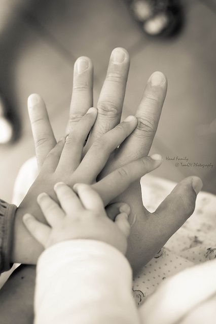 Hand Family [Explored] by Tom Huynh