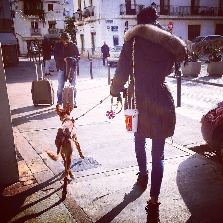 The old city Ibiza , Robyn & Lola . 31/12/2014