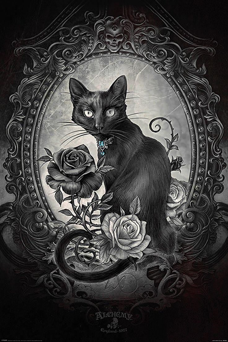 Alchemy Poster Paracelcus Gothic kunst, Schwarze katze